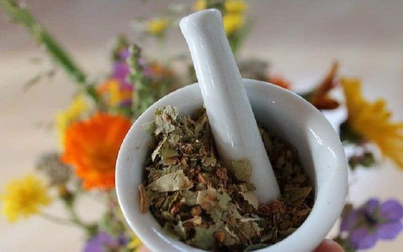 10 Remédios Naturais Para Parar a Diarreia